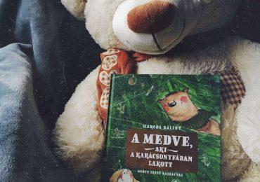 Harcos Bálint: A medve, aki a karácsonyfában lakott + Nyereményjáték
