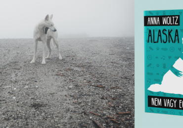 Anna Woltz új könyve a Tilos az Á Könyvek kiadónál